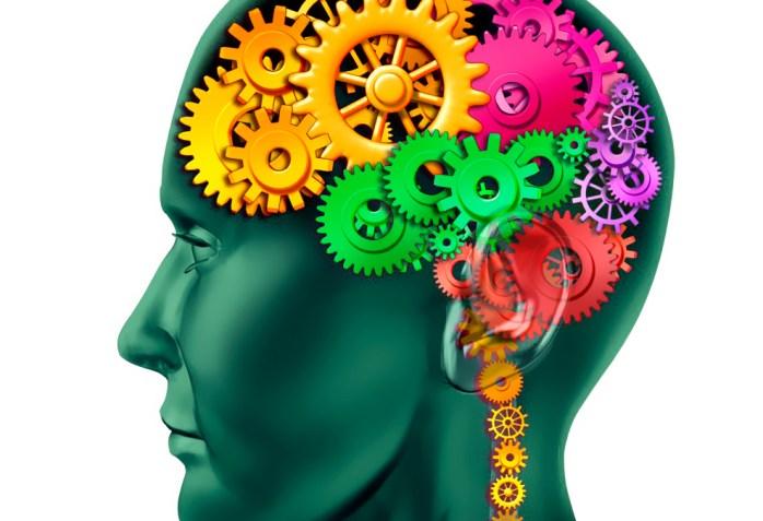 Le neurofeedback, qu'est-ce que c'est?